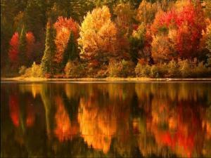Lake reflect 2